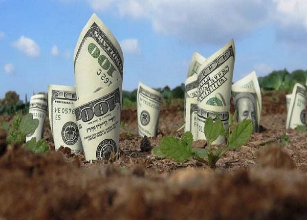 Tiền sử dụng đất là gì?