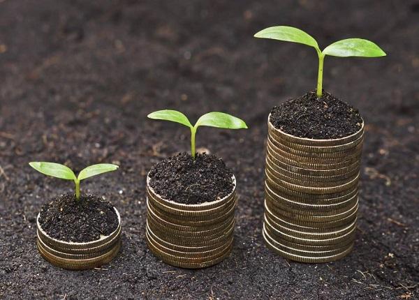 Khi nào được miễn, giảm tiền sử dụng đất?