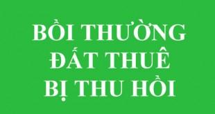 boi-thuong-dat-thue