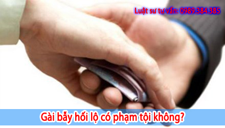 luat-su-tu-van-gai-bay-nhan-hoi-lo-co-pham-toi-khong